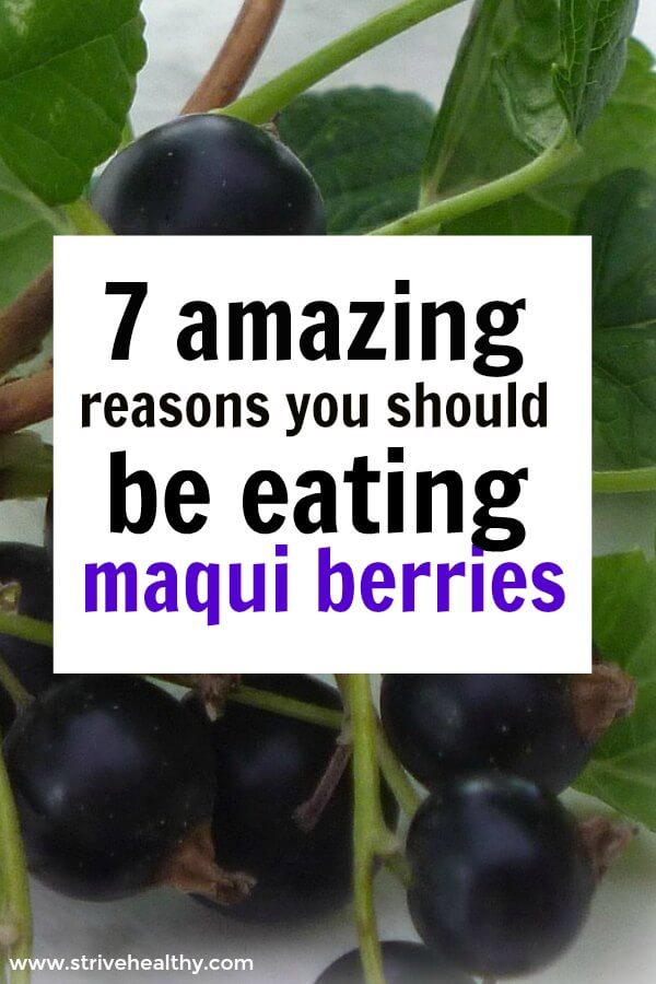 6 Benefits Of Maqui Berries On Your Health Strive Healthy